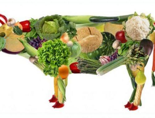 È naturale scegliere uno stile di vita vegano o vegetariano?