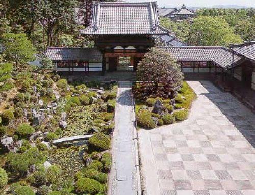 Il giardino zen – Testo del 24.06.2002