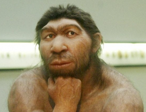 Neanderthal estinto a causa dell'improvviso crollo del campo magnetico terrestre